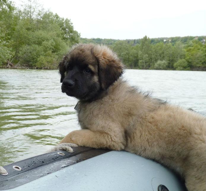 Nashkaia sur le bateau